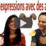 Expressions françaises avec des animaux