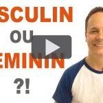 Le genre en français (masculin / féminin)